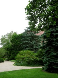 Present day view of green space next to Peters Hall