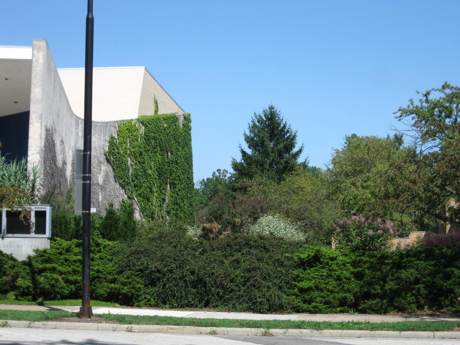 Present day view of green space next to Hall Auditorium